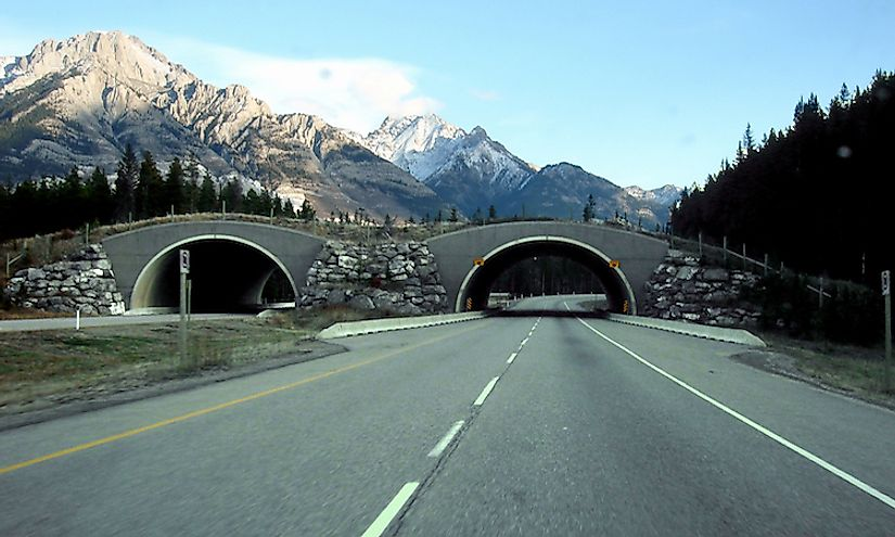 Trans-Canada Highway in Alberta, Canada, in the Banff National Park, between Banff and Lake Louise.