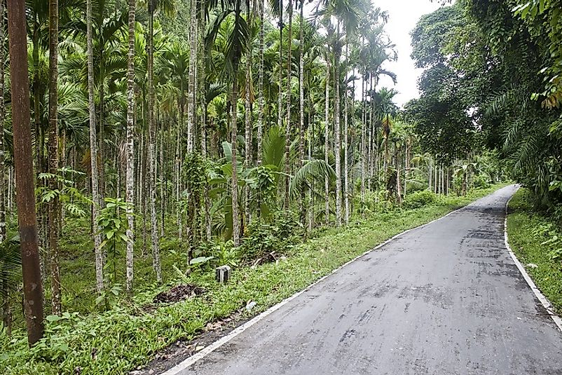 The construction of National Highway 223 (the Great Andaman Trunk Road) has been one of the biggest disruptions in history to the life of the Jarawa.