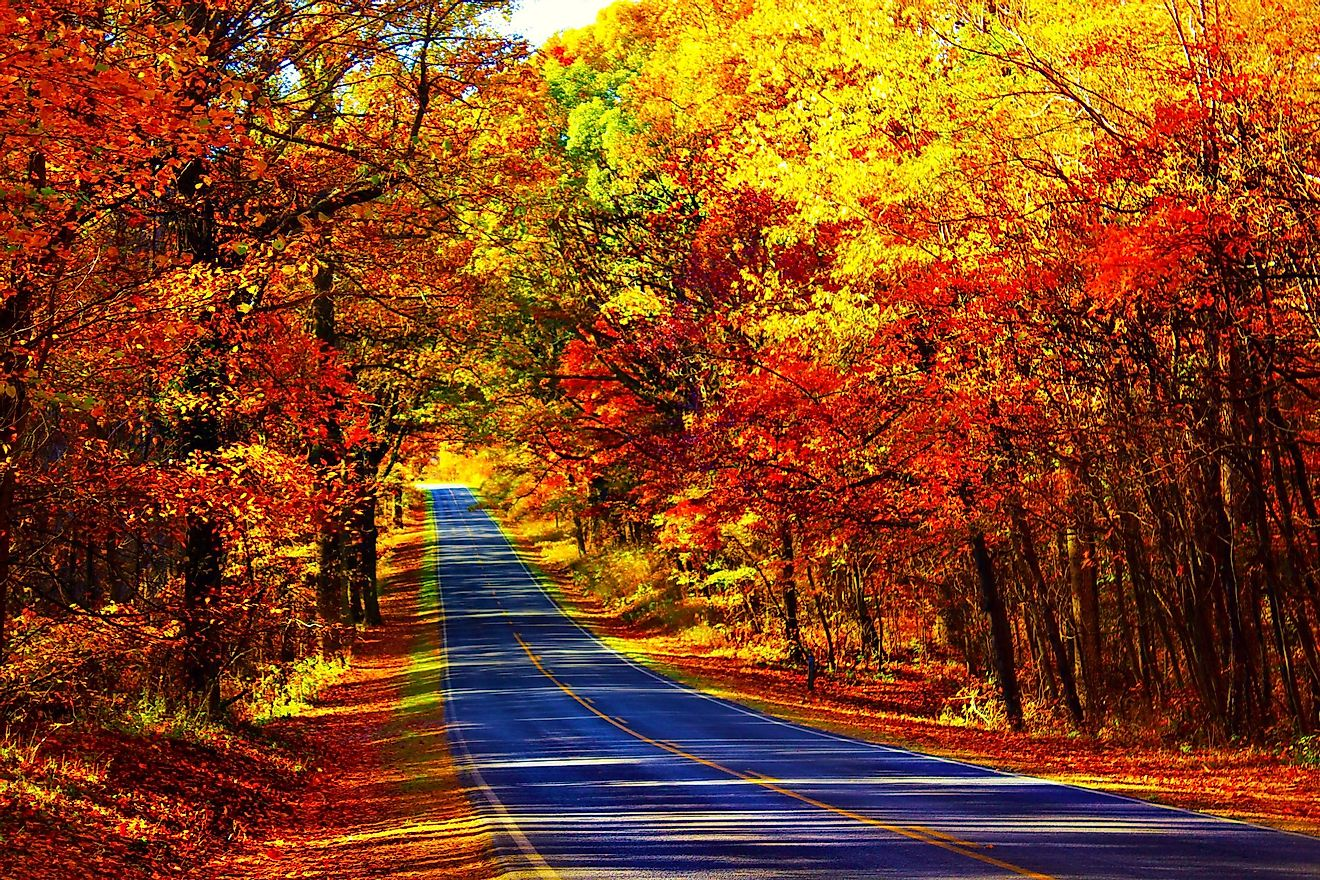 Roadtrips to see the autumn colors is a popular activity in some parts of North America.