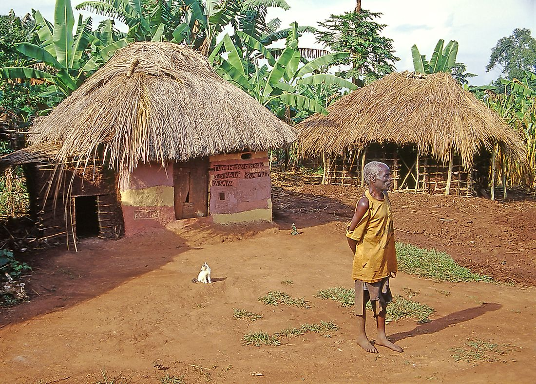 Traditional East African huts, such as these in the Buikwe region, still list among the predominant forms of residential architecture in rural Uganda.