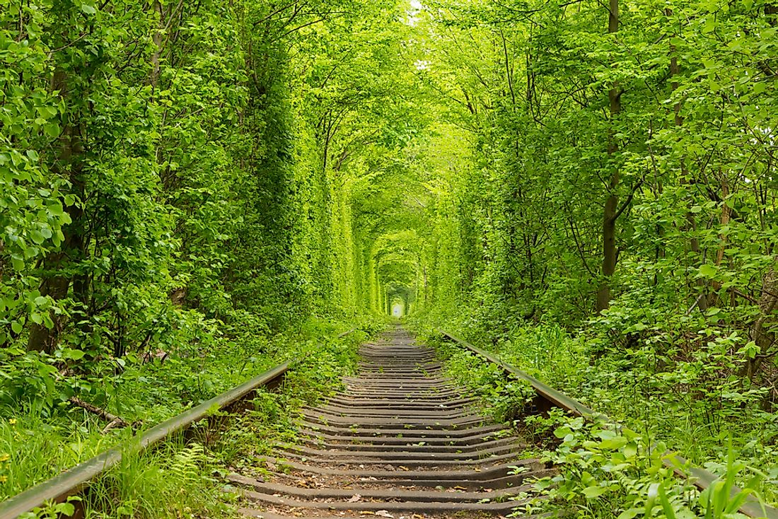 "Ukraine's famous ""Tunnel of Love""."