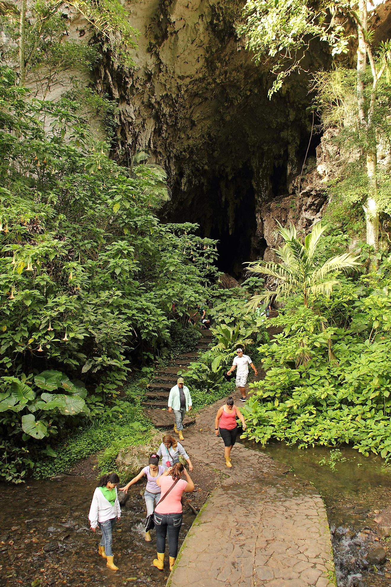 Entrance to Guacharo Cave and National Park located in Caripe, Monagas. Image credit: Edgloris Marys/Shutterstock.com