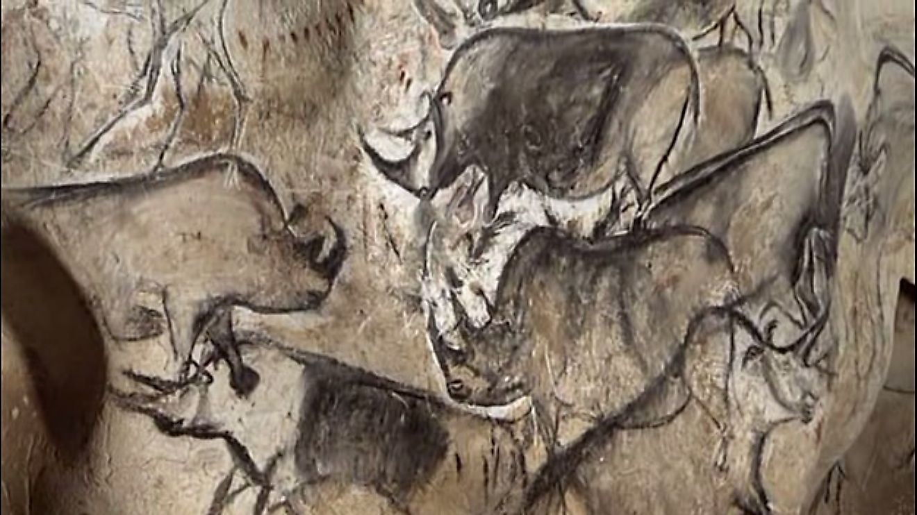 A Group of Rhinos, ancient painting from the Chauvet Cave, France.
