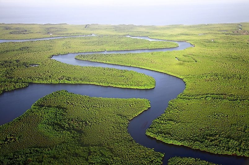 Thriving wetlands and forests along the Gambia River.
