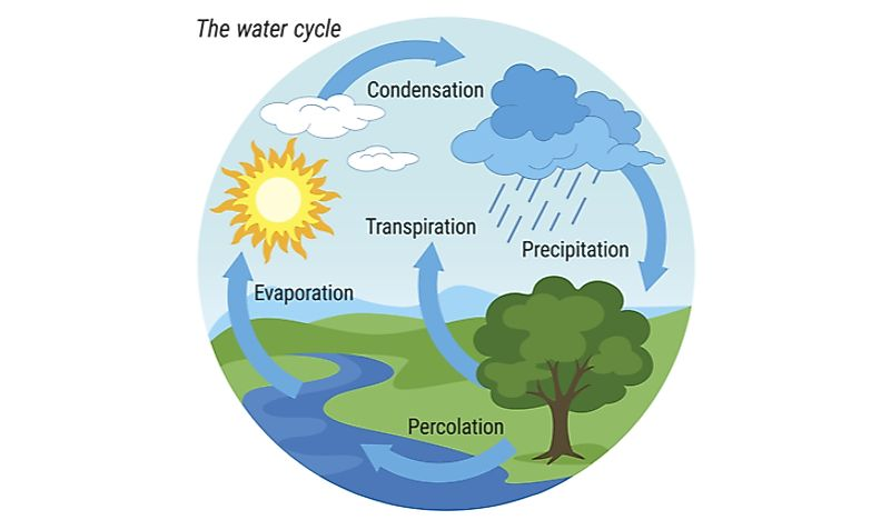 The water cycle serves to filter and replenish the water that sustains life on earth.