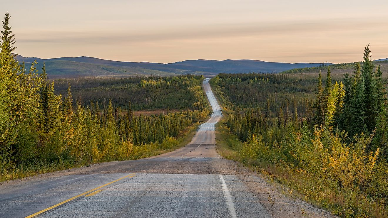 An empty road through the Alaskan wilderness.