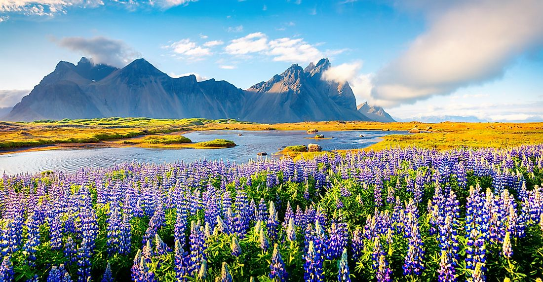 Despite its name, Iceland experiences a warm temperate climate.