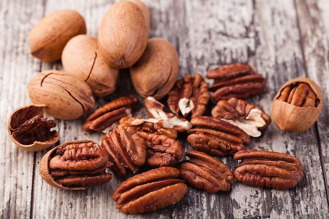 Pecans are a popular snack food and are nutritious.
