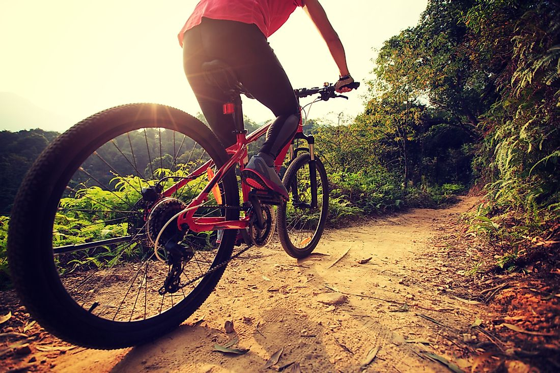 Mountain biking is not only fun, but also a fantastic form of exercise.