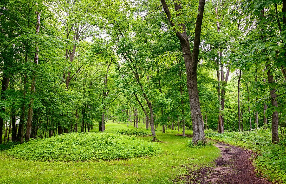 Fourteen miles of trails run through the Effigy Mounds National Monument.