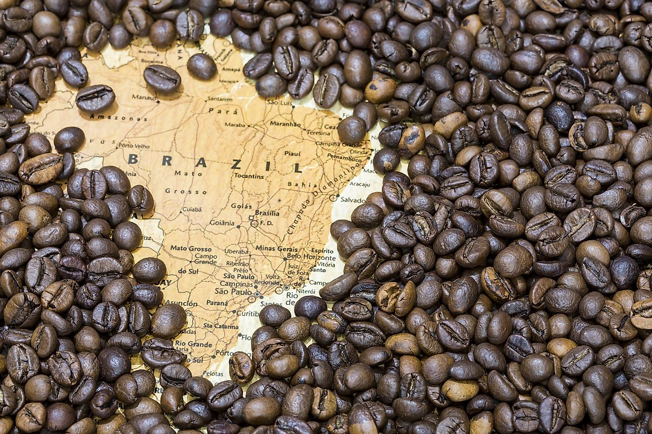 Brazil is the world's largest exporter of coffee. Image credit: MattiaATH/Shutterstock.com