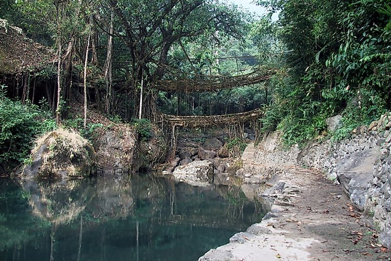 Umshiang Double Decker root bridge near Cherrapunjee, Meghalaya, India.