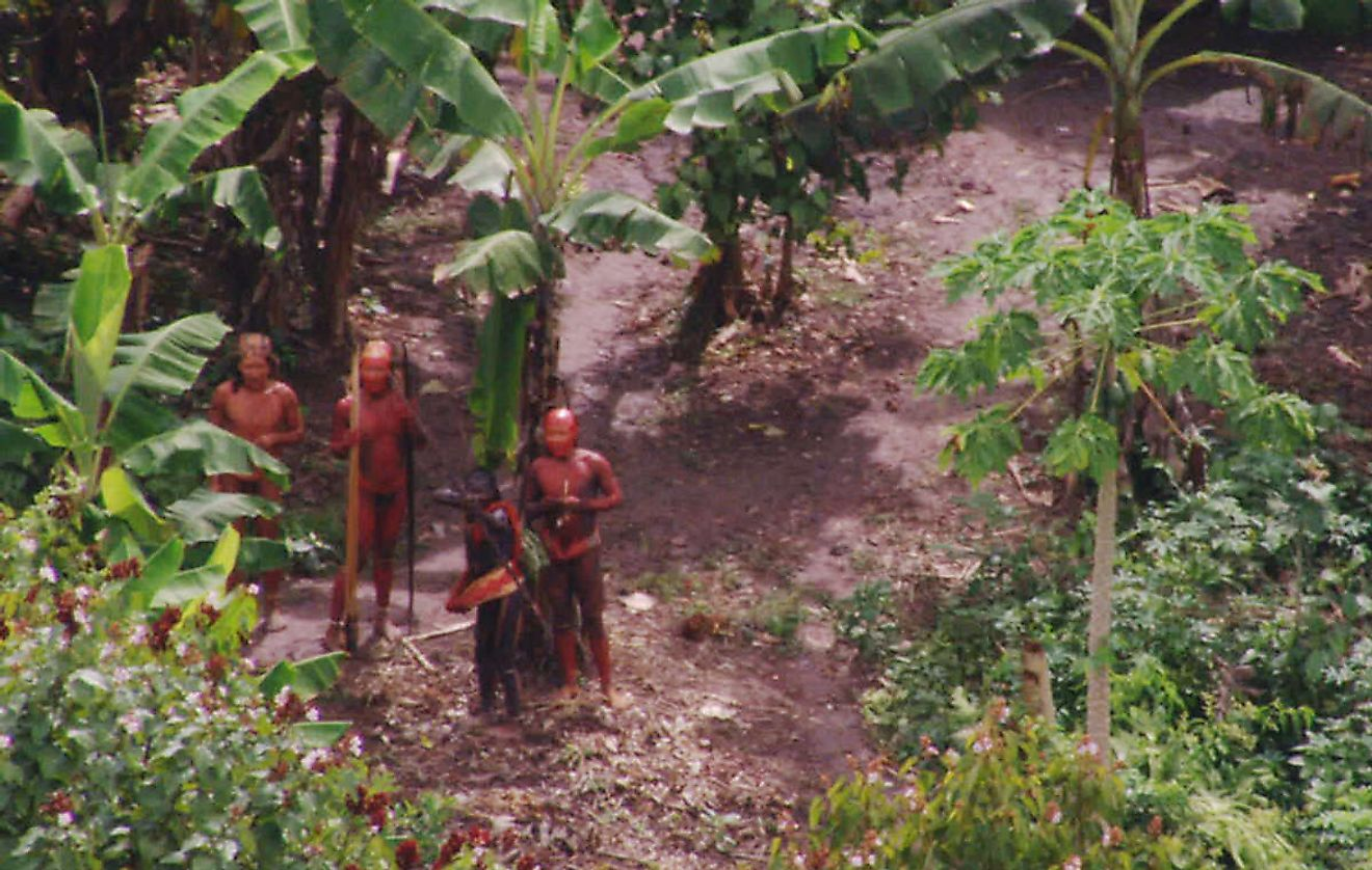The Brazilian tribes have been a complete unknown to researchers for years now, and mostly still are. Image credit: survivalinternational.org
