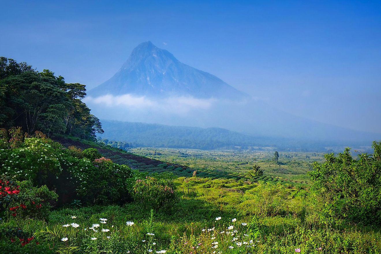 Virunga National Park, Democratic Republic of the Congo.