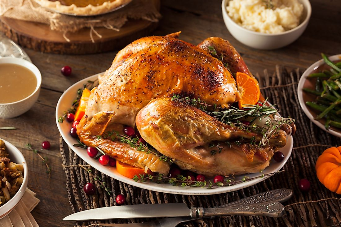 Turkey is the traditional meal during Thanksgiving in the United States.