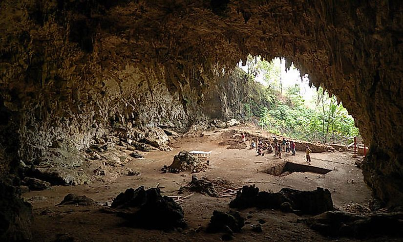 Caves and cave animals have mystified humans for centuries and that has encouraged the hobby of caving.