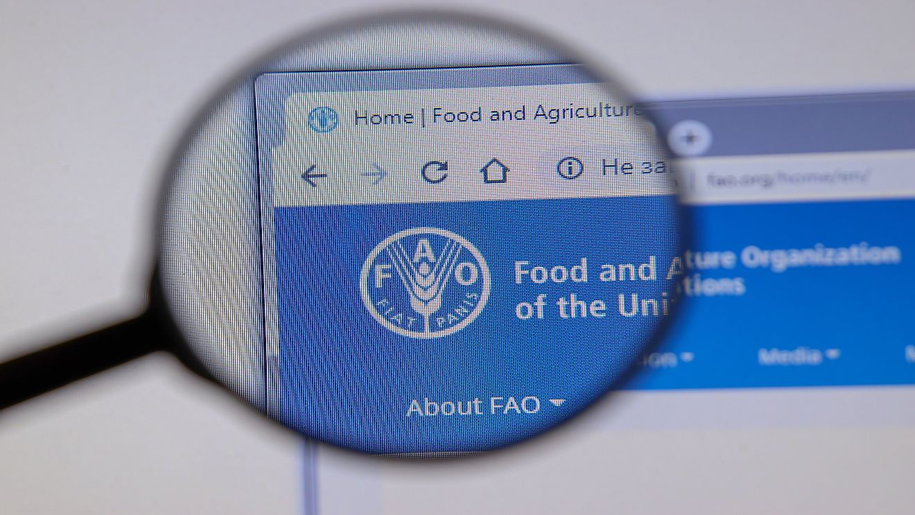 The Food and Agriculture Organization (FAO) is an agency of the United Nations that advocates for international efforts to defeat hunger.