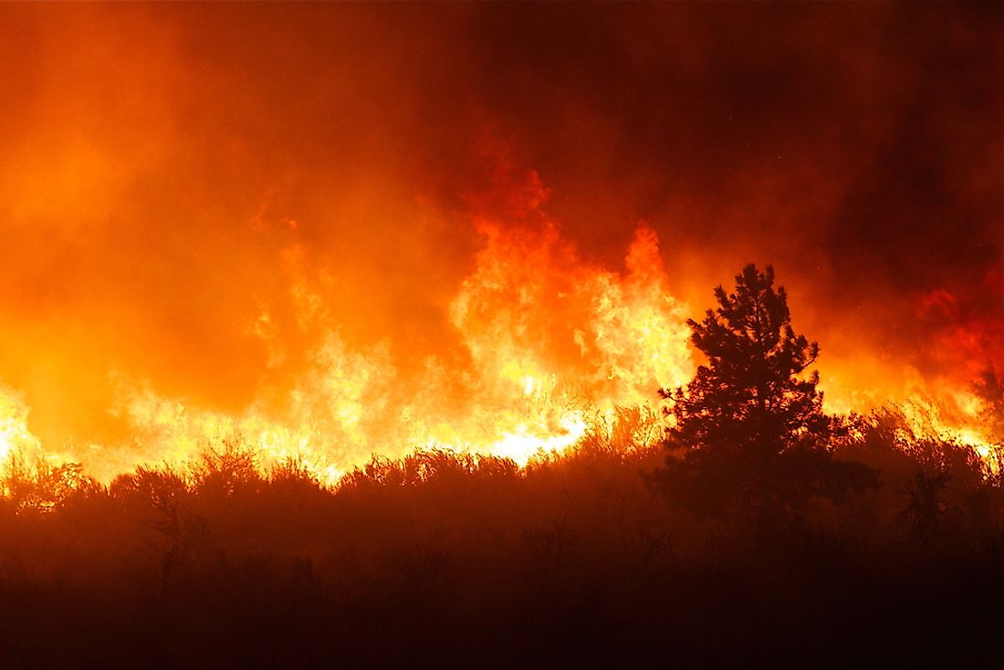 Firestorms have significantly contributed to some of the largest wildfires.