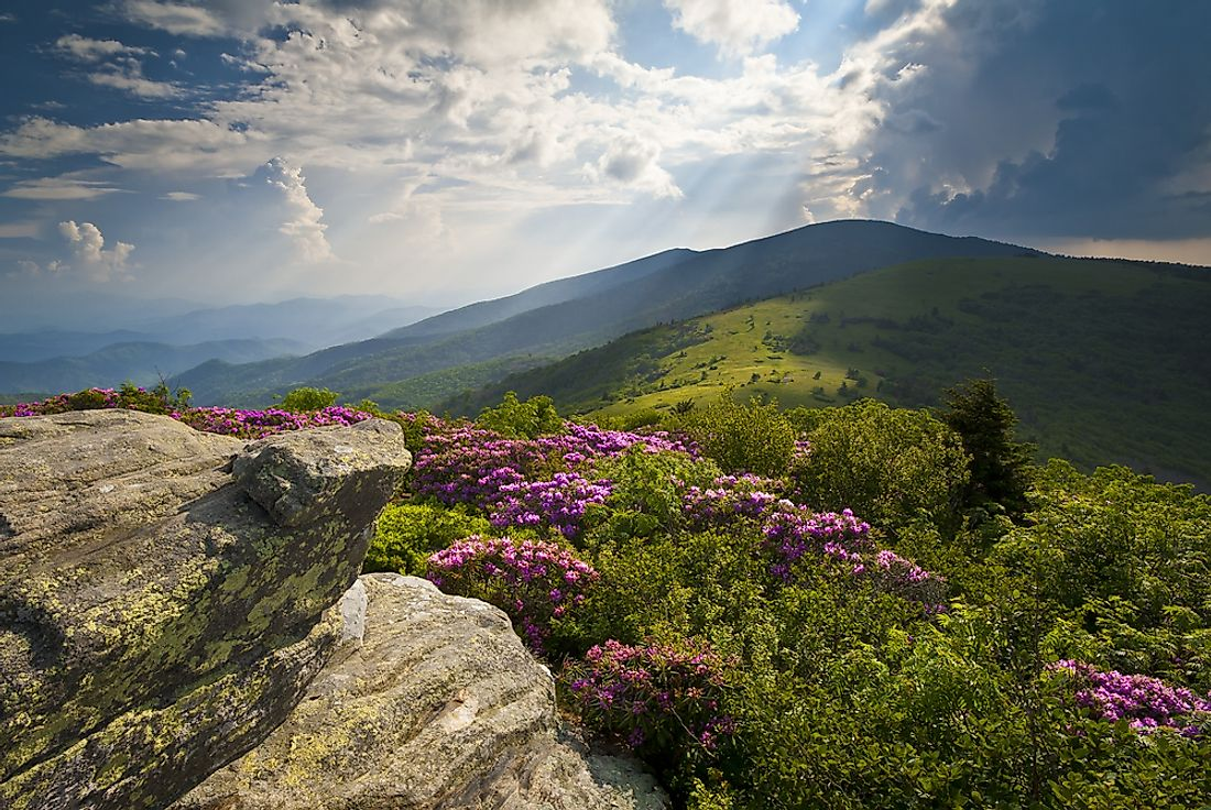 The Appalachian Trail is seen here in Tennessee.
