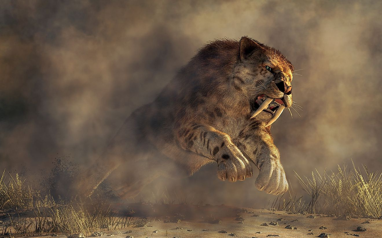 A 3D image of a prehistoric massive smilodon, an extinct species.