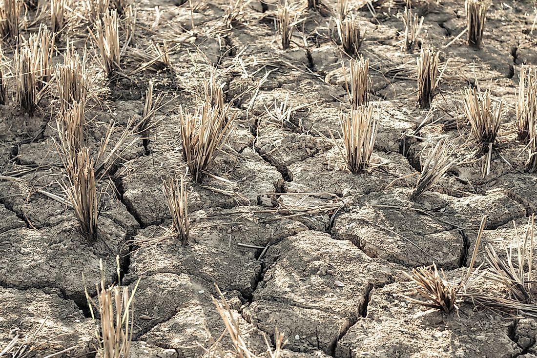 Cracked ground as a result of serious drought.