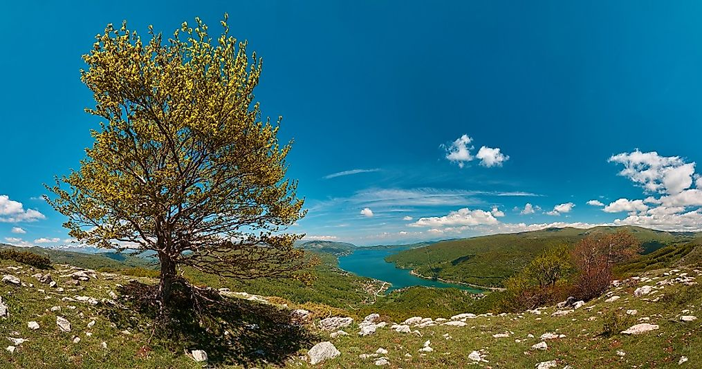 Hillside view of the fringes of Mavrovo Lake in Mavrovo National Park along the Albanian border with Macedonia.