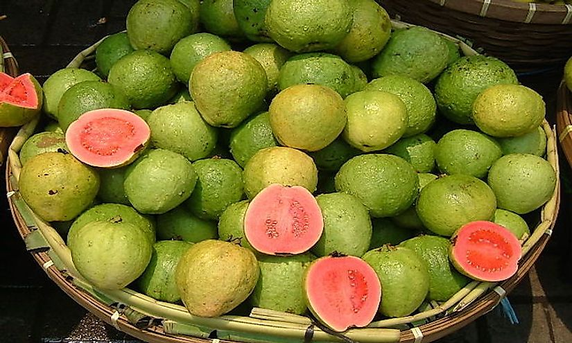 Guava being sold at a fruit stall in Pasar Baru, Jakarta, Indonesia