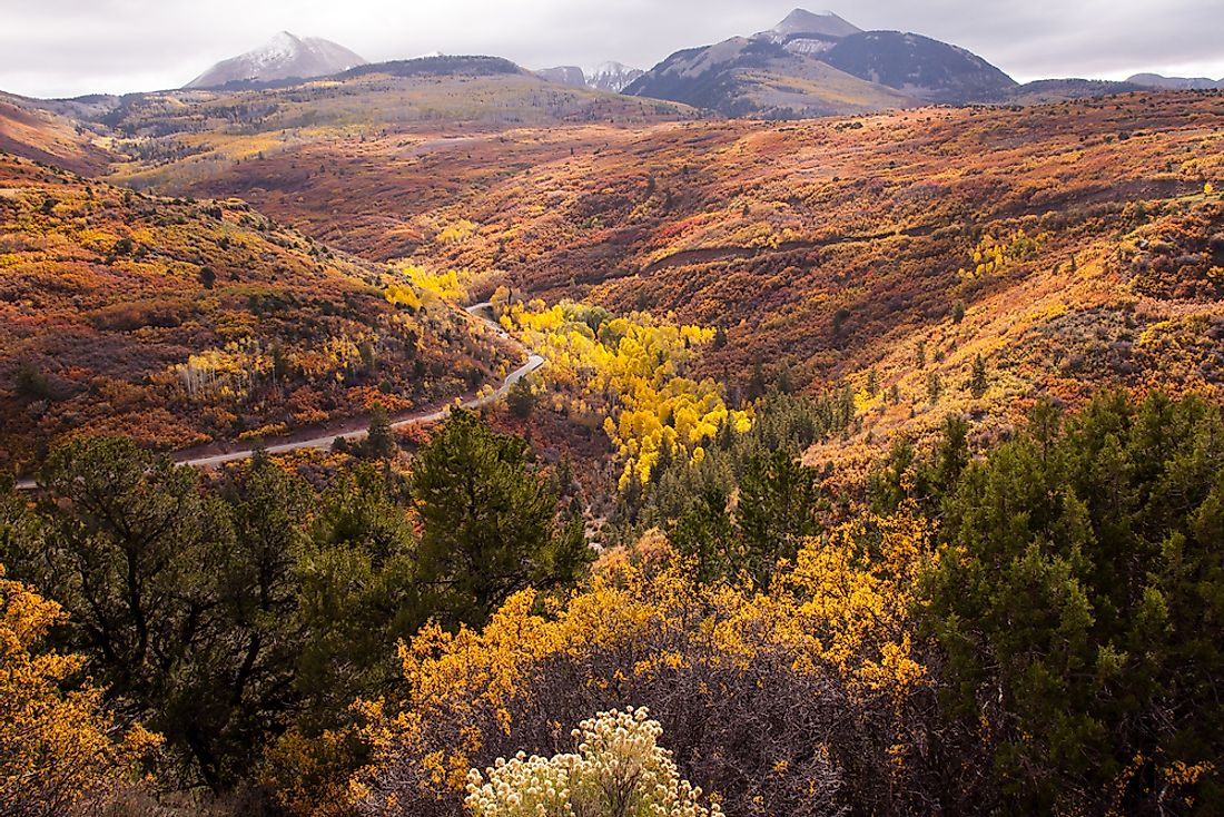 The Manti-La Sal National Forest was established as a forest reserve in 1903.