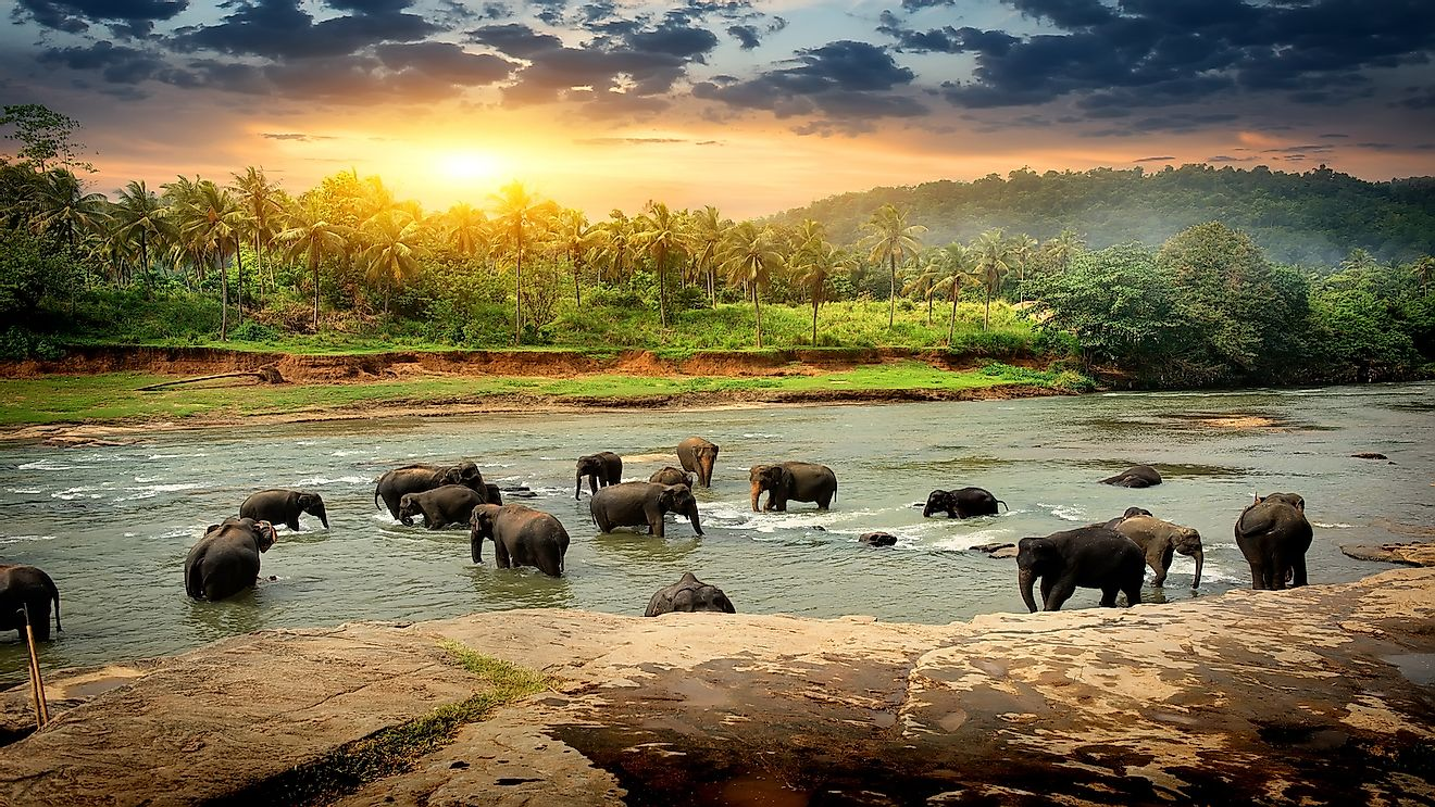 Sri Lanka is one of the most beautiful exotic tourist destinations in Asia.