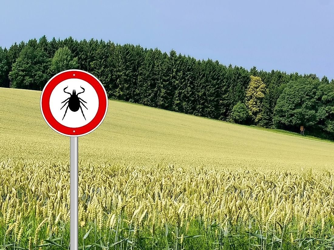 A sign warning of possible ticks in the area.