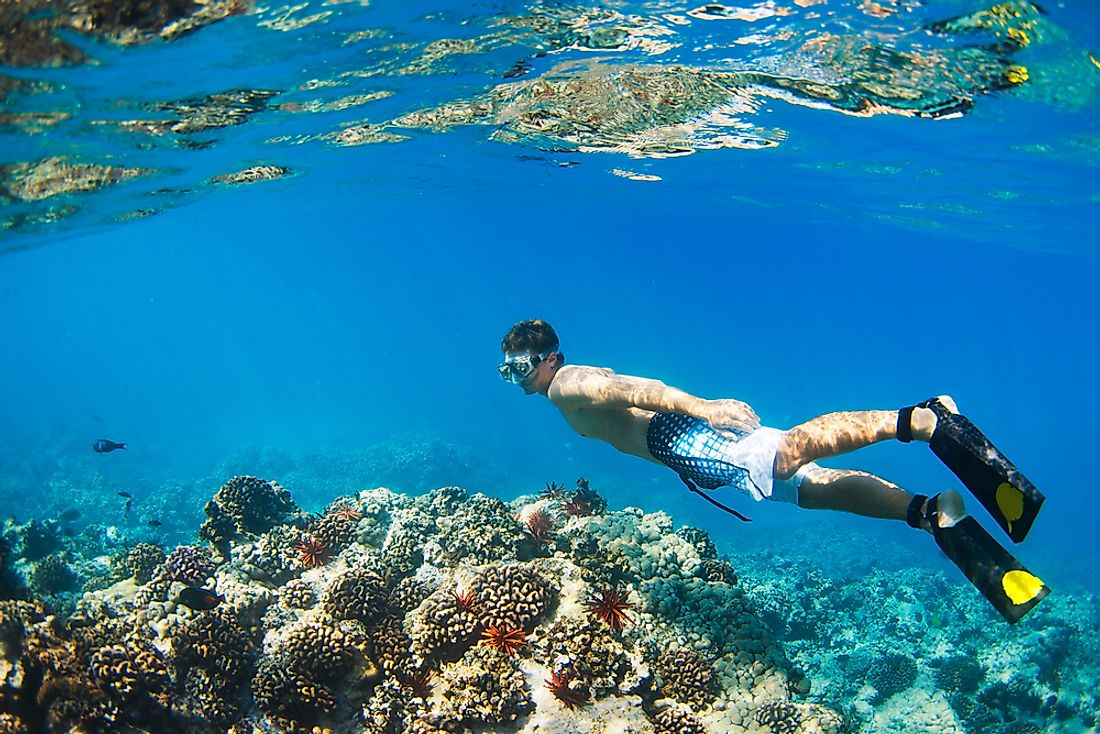 Snorkeling around a tropical reef in Hawaii.