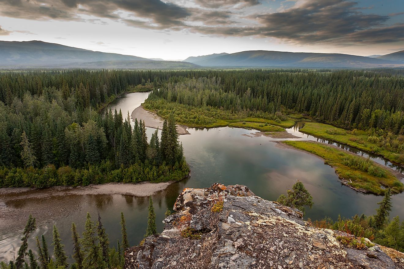 Boreal forest wilderness in beautiful McQuesten River valley in central Yukon Territory, Canada. Image credit: Pi-Lens/Shutterstock.com