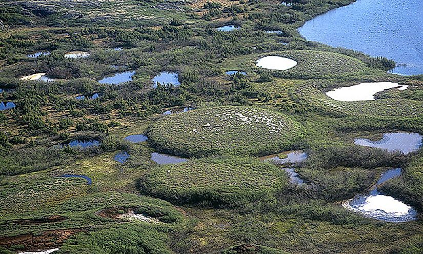 A group of well developed palsas as seen from above. Ice lenses are responsible for palsa growth.