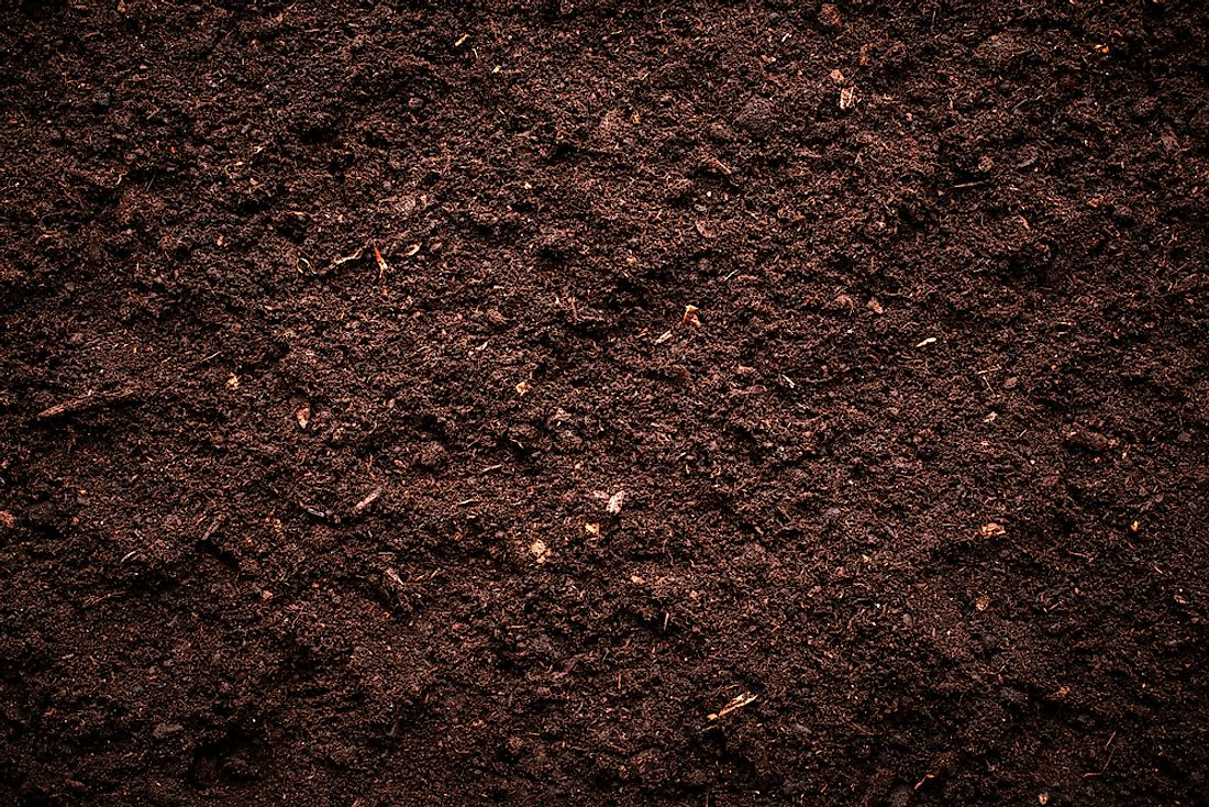 Soil is composed of a mix of different things.