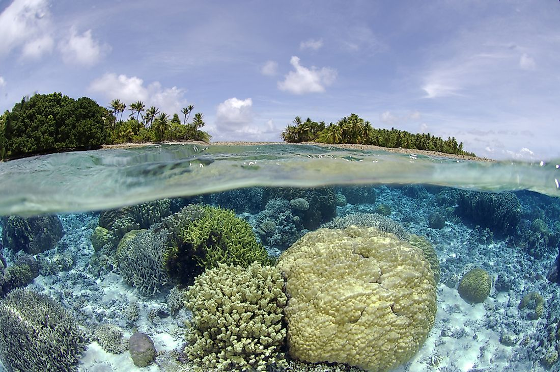 A coral reef is seen here near Majuro, Marshall Islands.