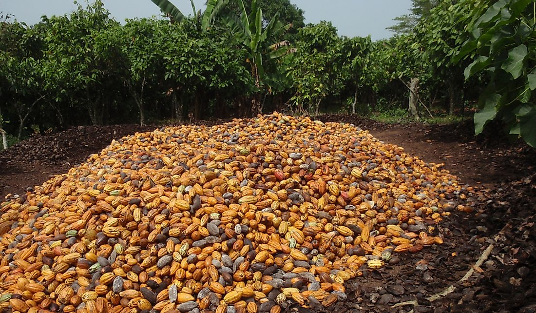 Ivory Coast is the world's leading producer of cocoa beans.