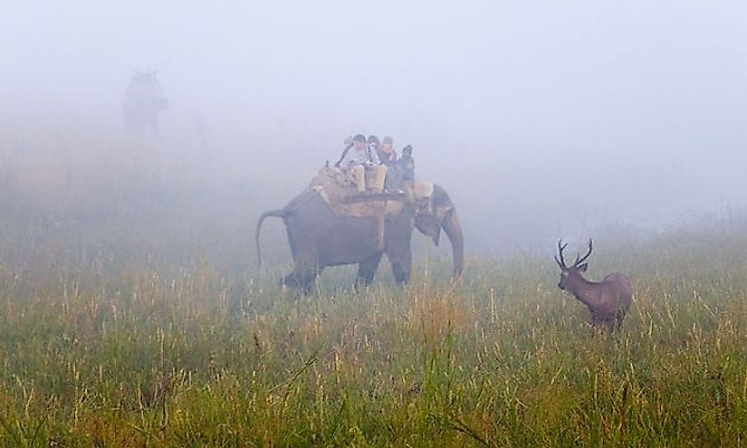 The Jim Corbett National Park is India's oldest national park and one of the most famous in the world.