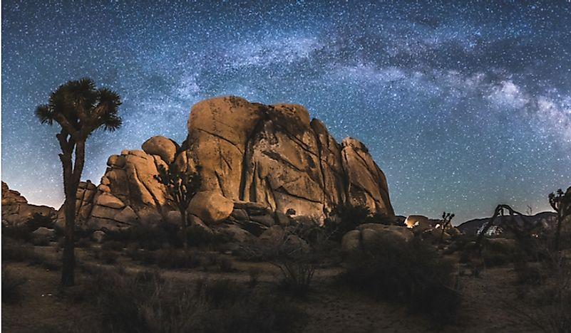 The night sky in Joshua Tree National Park.