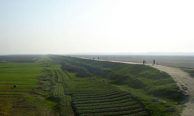 Rice fields in North Korea.