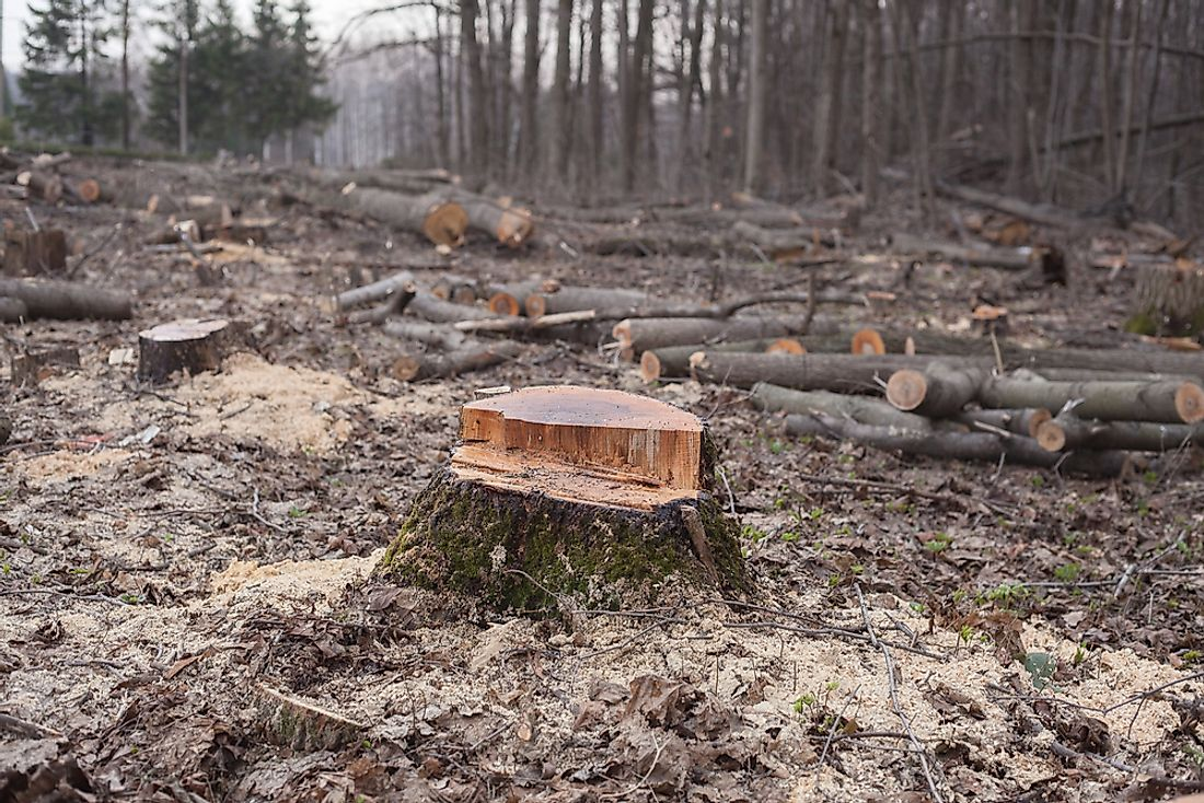 Deforestation is an example of environmental degradation.