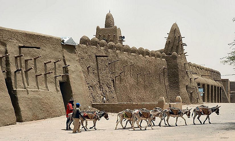Donkeys in Timbuktu are the preferred method of transport.
