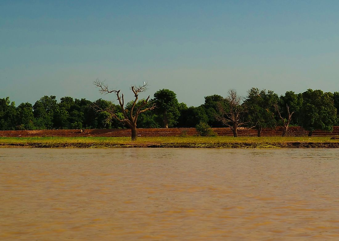 The Niger River near Niamey.