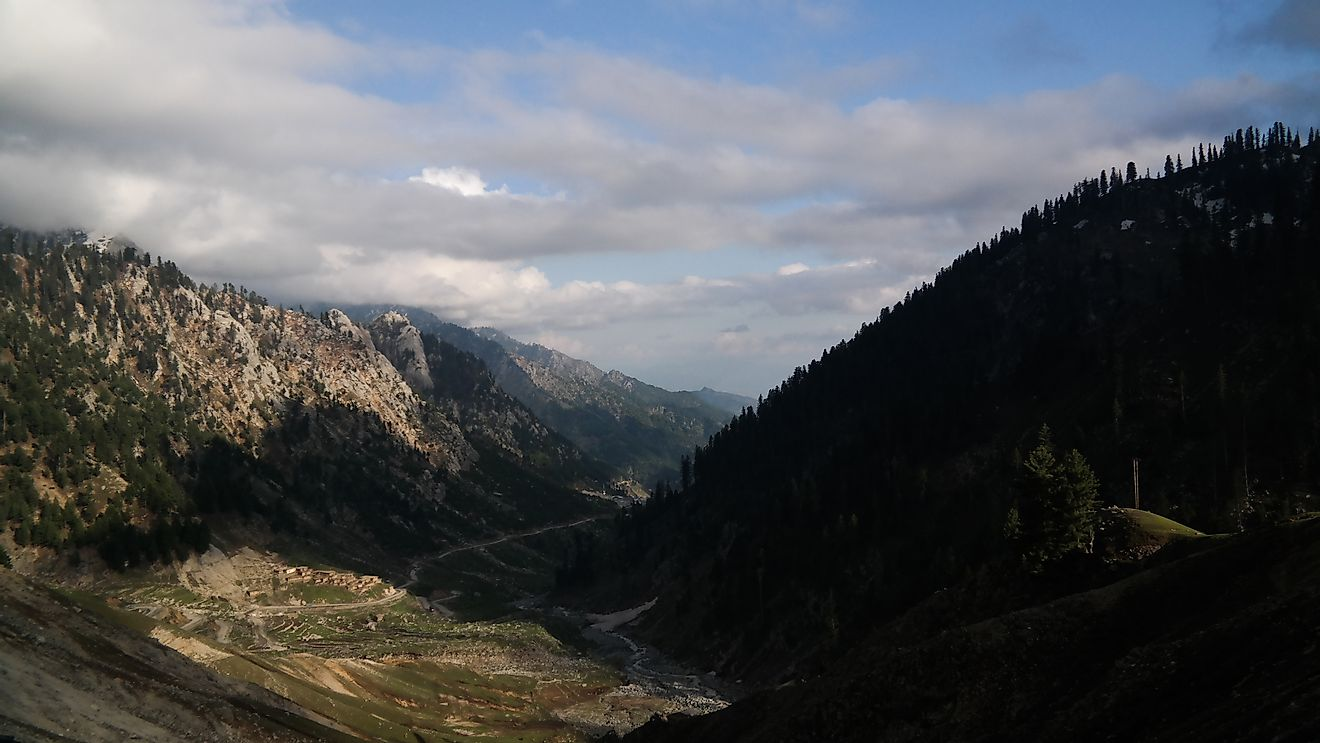 The mountains and valleys of Pakistan provide habitats for amphibians.