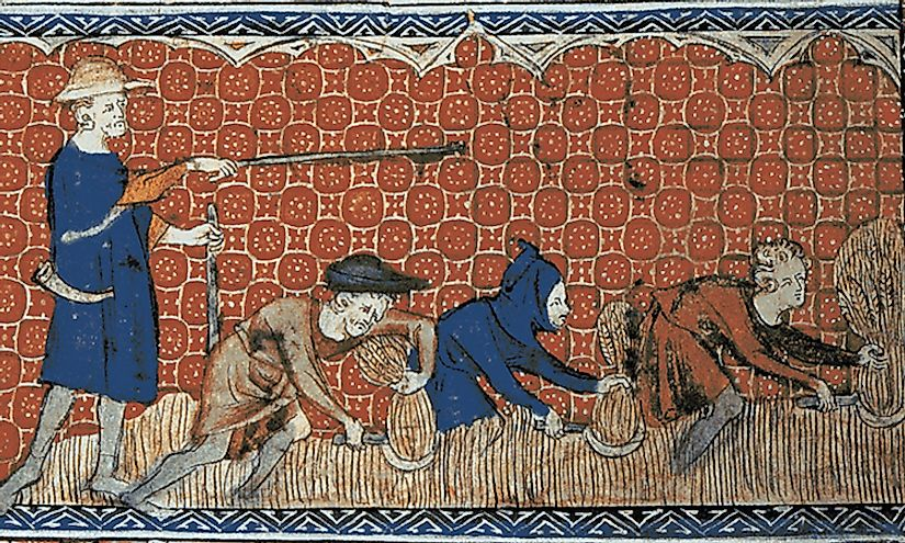 Depiction of socage on the royal demesne in feudal England, c. 1310