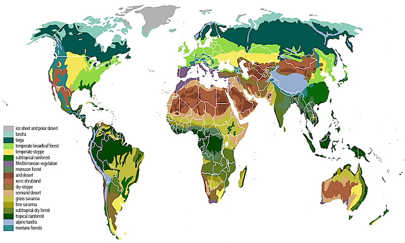 The main biomes in the world.