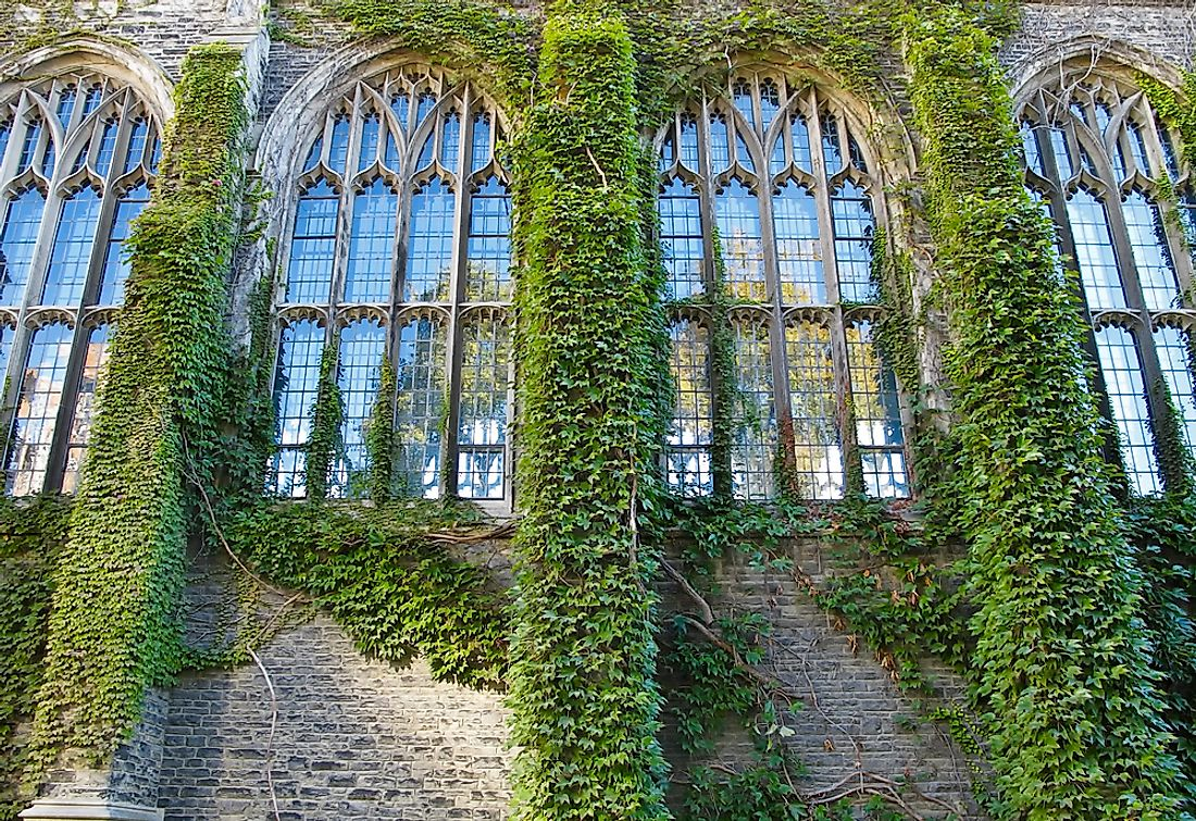 The name of the ivy league originates from the appearance of ivy on old educational buildings.