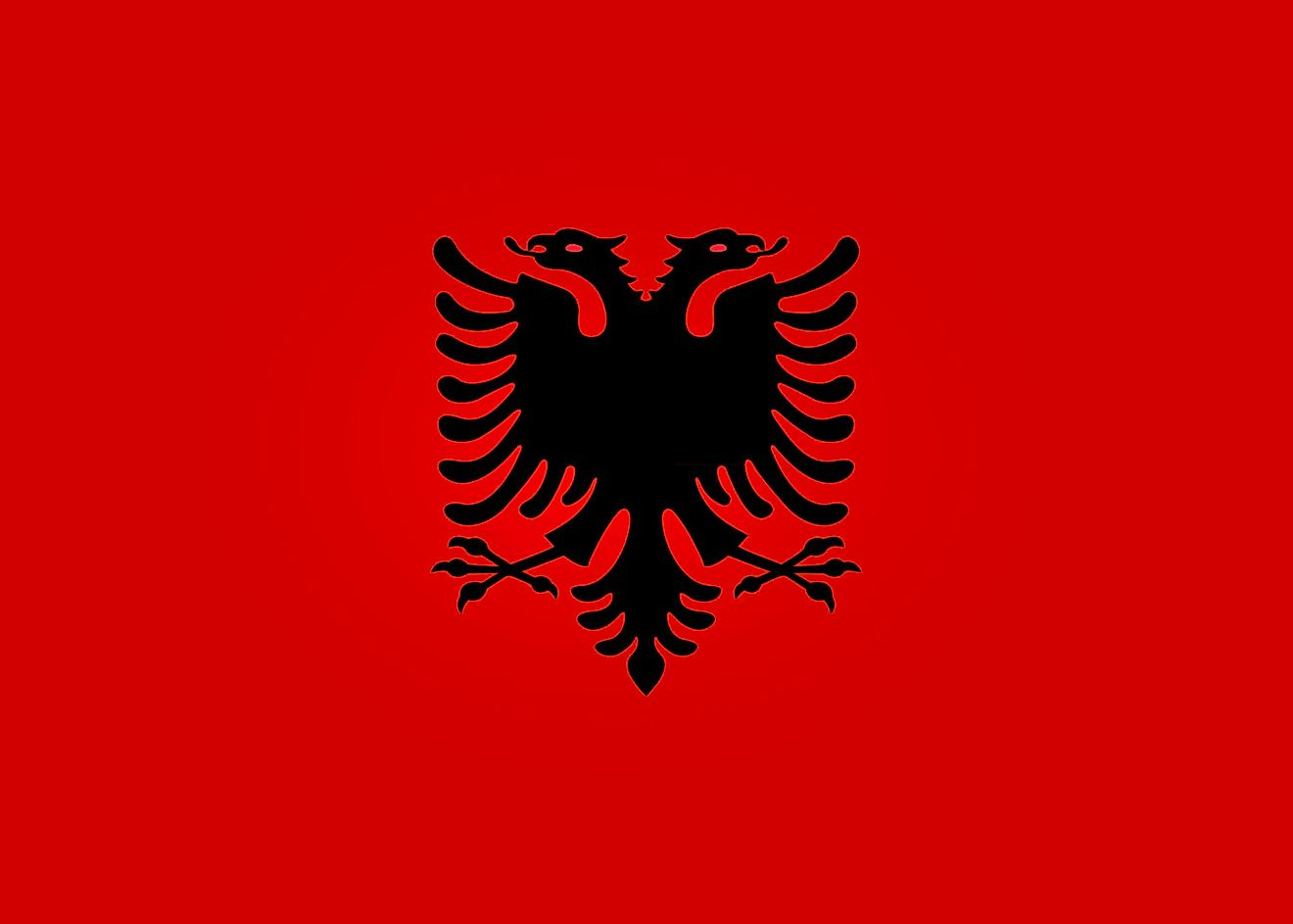 The flag of Albania famously features an eagle.