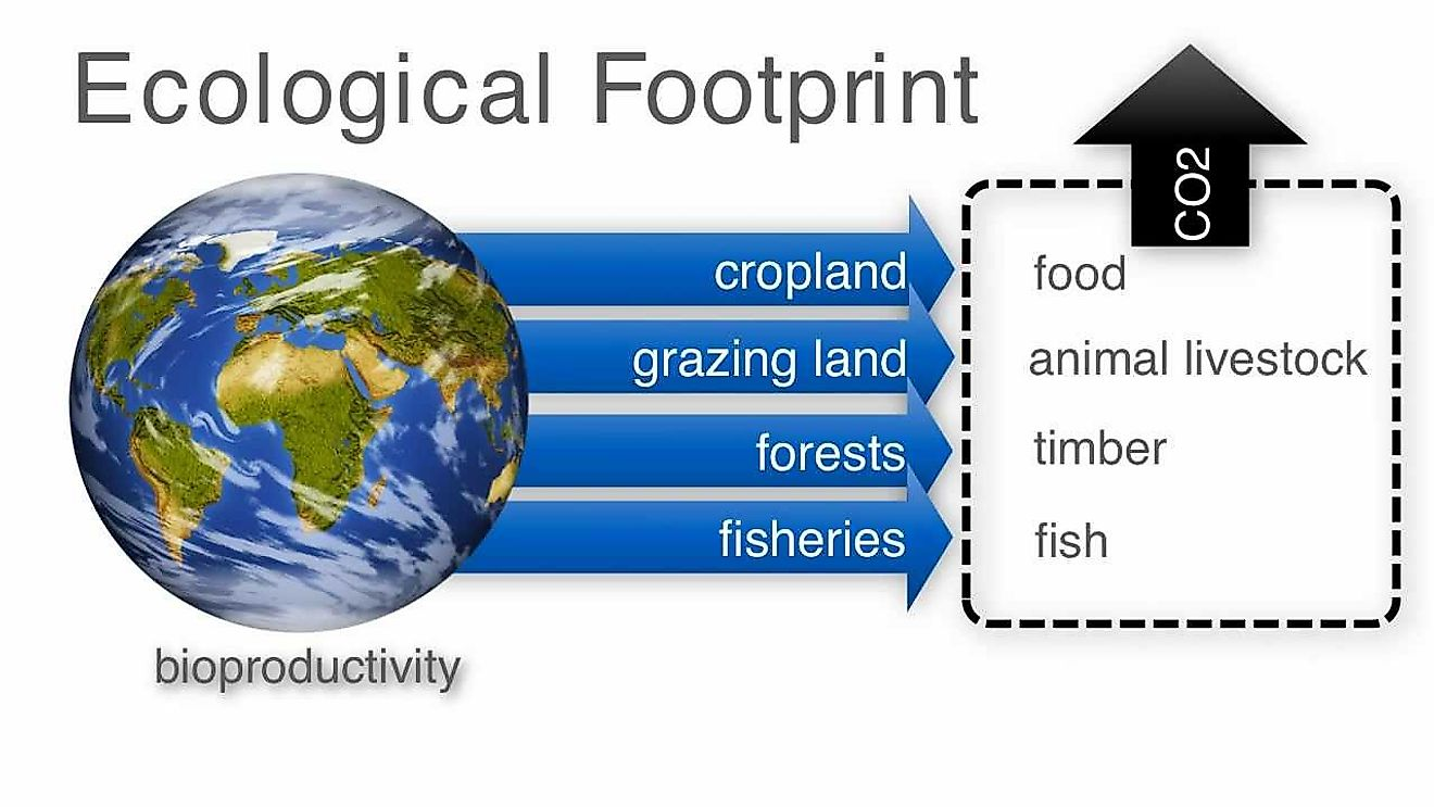 Ecological Footprint Is The Impact Of An Individual/Community On The Environment Measured As Land Required To Sustain Their Usage Of Natural Resources.