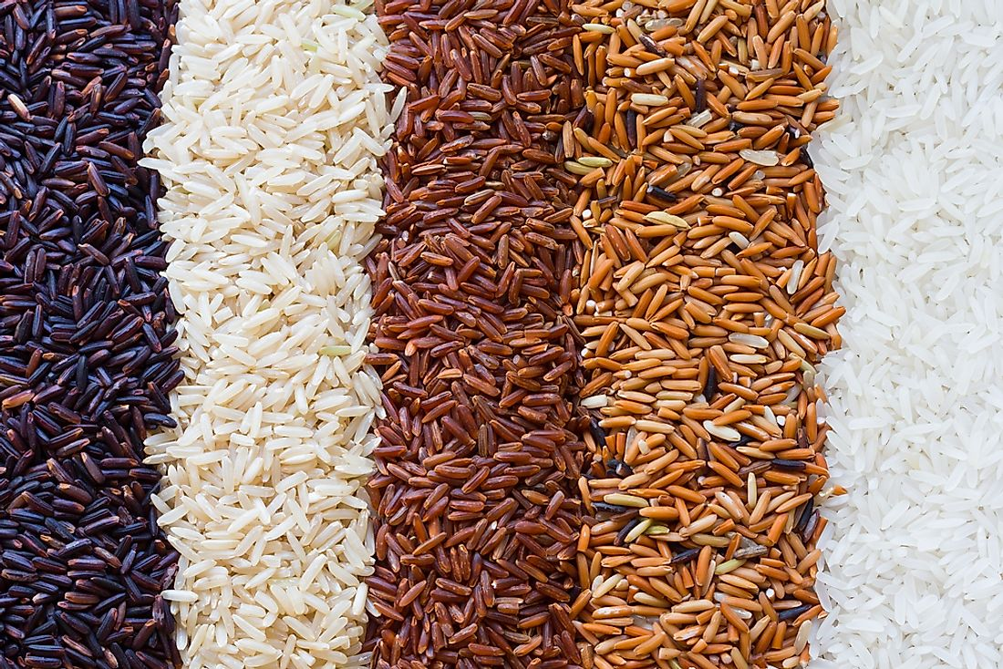 Rice comes in several varieties.