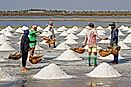 Top 20 Salt Exporting Countries